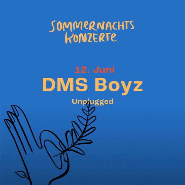 AUSVERKAUFT! DMS Boyz: Unplugged (SH)